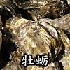 牡蛎(ぼれい)