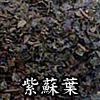 紫蘇葉(そよう、しそよう)