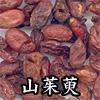 山茱萸(さんしゅゆ)
